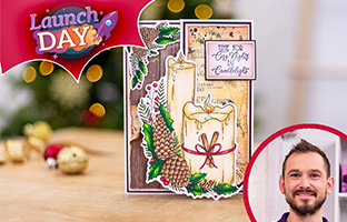 Launch Day - 2nd July -NEW Christmas Floral Spray Stamp and Dies