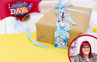 Launch Day - 22nd June - NEW Front & Back Character Gift Tags