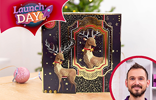 Launch Day - 24th July - NEW Hunkydory