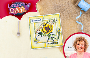 Launch Day - 25th June - NEW Bee-Youtiful Collection