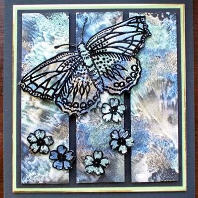 Butterflies and Florals