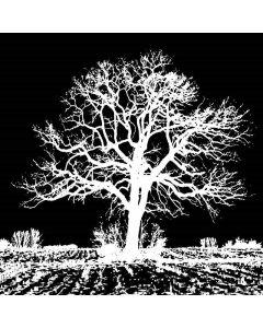 Imagination Crafts Art Stamps - Oak tree