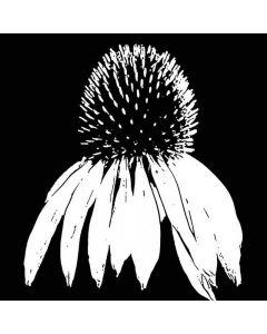 Imagination Crafts Art Stamps - Echinacea