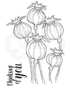 Woodware Clear Singles - Poppy Heads