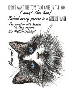 Sheena Douglass A Little Bit Sketchy A6 Rubber Stamp - Shabby Cat