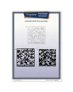 Claritystamp Three Way Overlay A4 Stamp Set - A Little Bird Told Me