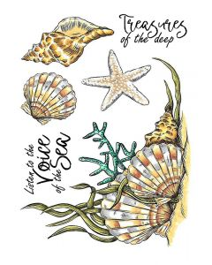 Crafter's Companion A6 Rubber Stamp - Seashells